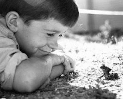 Nino-mirando-una-rana